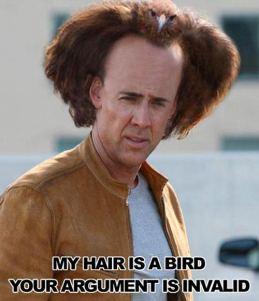 nic-cage-birdhair